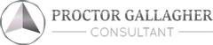 DJ Peck PGI Business Consultant